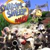 Champion Sheep Rally